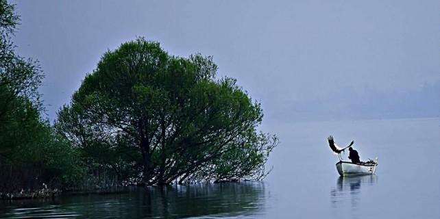 Hafta içi balıkçılık hafta sonu tekne turları