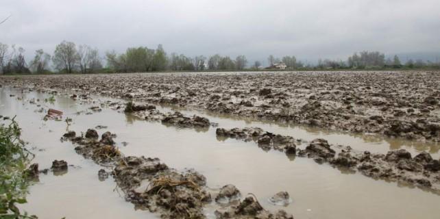 Ucuz patates hayal oldu...Bursa'da tarım alanlarını sel vurdu