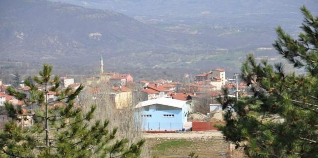 Bursa'nın bu ilçesi kestane, erik ve cevizin merkezi olacak