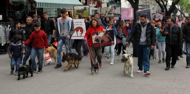 Bursa'da hayvanseverler sokaklara döküldü