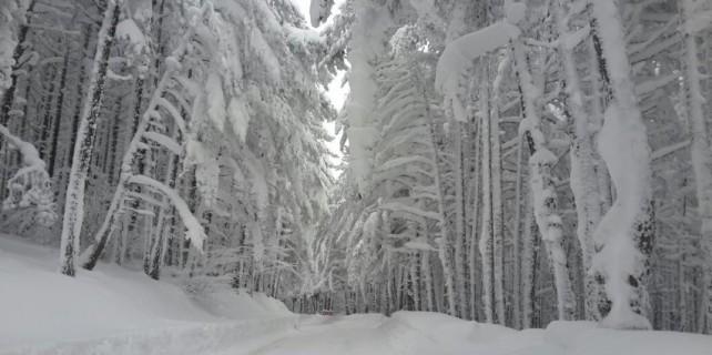 Bursalılar dikkat...Kar geliyor