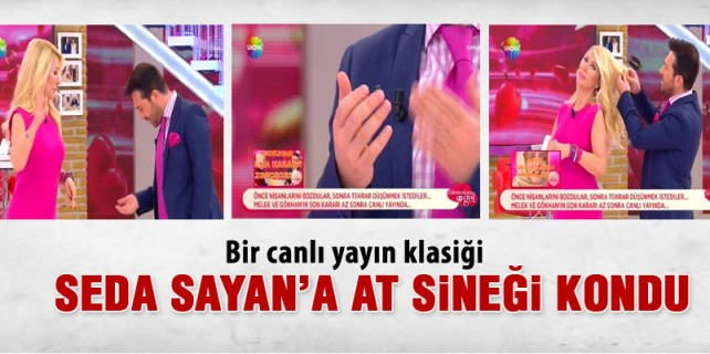 Seda Sayan'a canlı yayında at sineği kondu