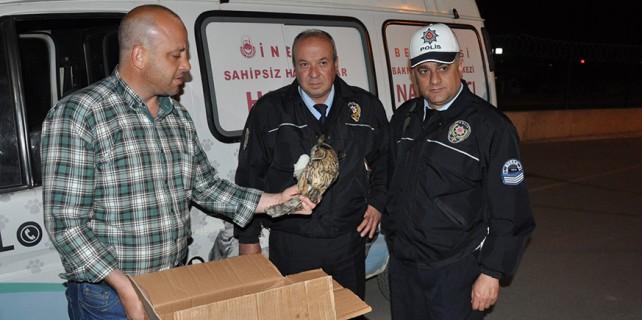 Yaralı kuşa polis şefkati