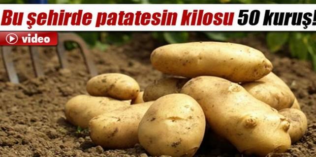 Bu şehirde patatesin kilosu 50 kuruş