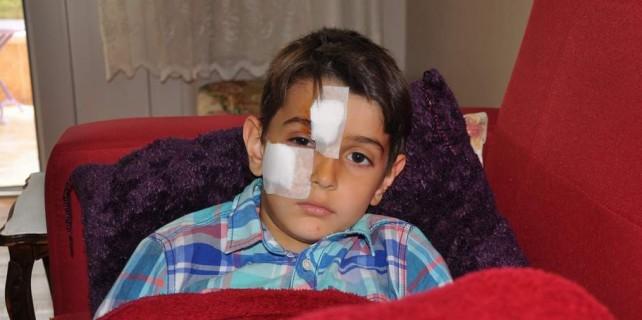 Bursa'da saldırgan köpek dehşeti