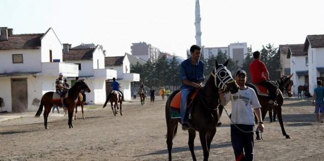 Bursa'da paha biçilemez atlara 5 yıldızlı hastane