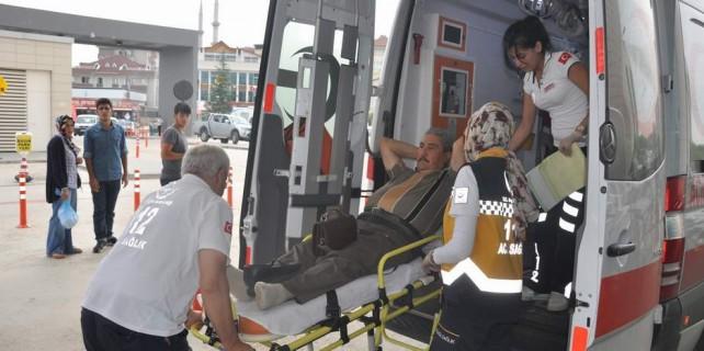 Bursa...Tavuk yüzünden 30 kişi ölüyordu
