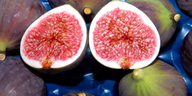 Bursa'nın siyah inciri altınla yarışıyor