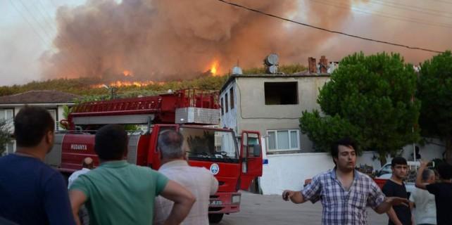 Mudanya'daki orman yangınında büyük vicdansızlık