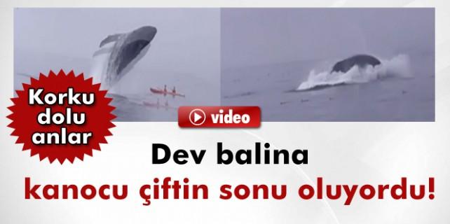 Dev balina sonları oluyordu