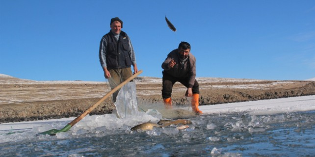 Donmuş gölde balık avı...