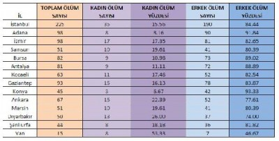 2015-de-309-u-silahli-413-kadin-cinayeti-basina-8163173_859_m