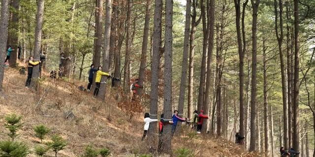 Ormana çakmakla gidene büyük para cezası...
