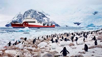 turkiye-antarktika-da-bilimsel-ussunu-kuruyor-8183666_2884_m