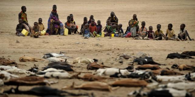Korkutan uyarı : Yarım milyon insan ölecek!