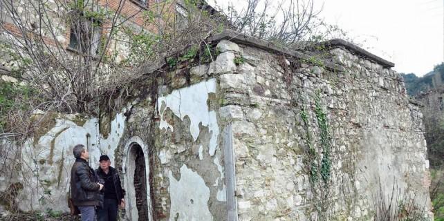 Tarihi hamamın çatısında incir ağacı çıktı...