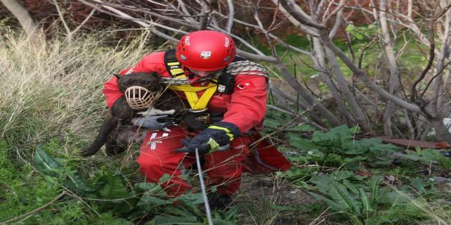 50 metrelik uçurumda nefes kesen kurtarma...