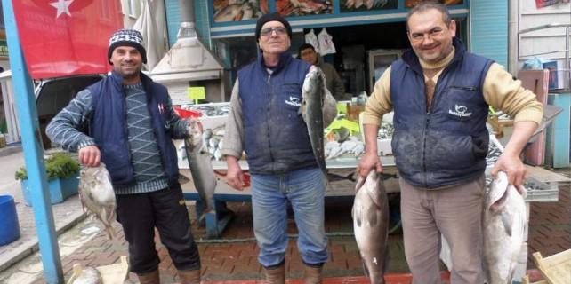 Bu balıkların fiyatları el yakıyor