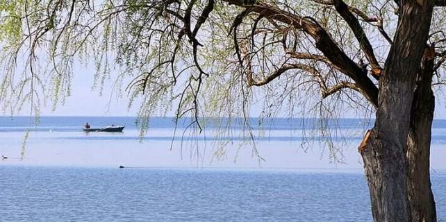 İznik Gölü'nde tehlike çanları...