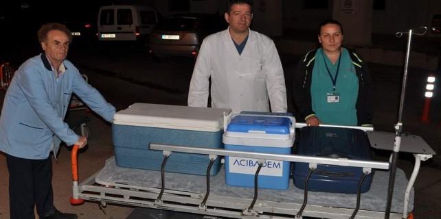 Organları Bursa'da can verecek