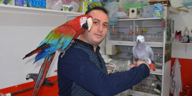 """Bu papağanlar çok farklı, """"Allah"""" diyor..."""