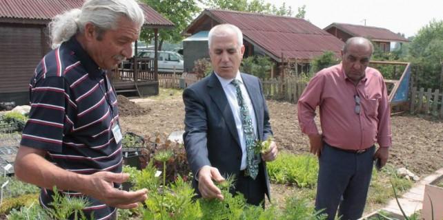 Bursa'da eko bahçe tıbba ışık tutuyor