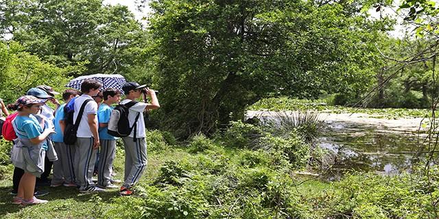 Longoz ormanlarında eğitim