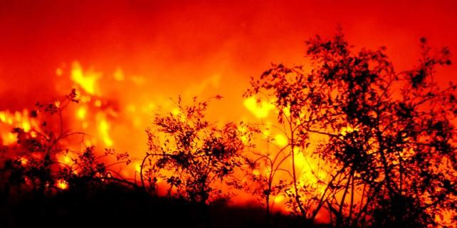 Türkiye'nin incisi yanıyor