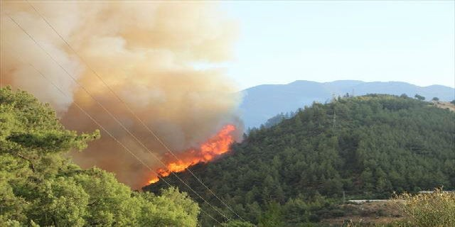 Büyük yangın tekrar başladı...