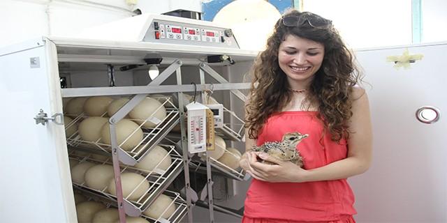 Kırmızı ete Bursa'dan rakip çıktı