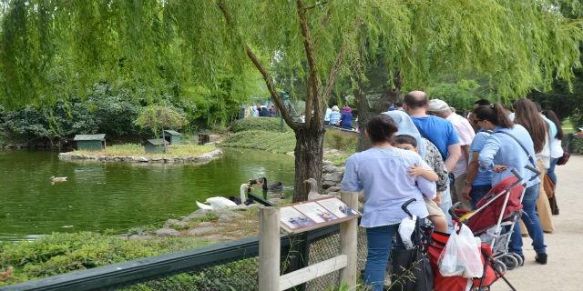 Zoo Park ziyaretçi akınına uğradı