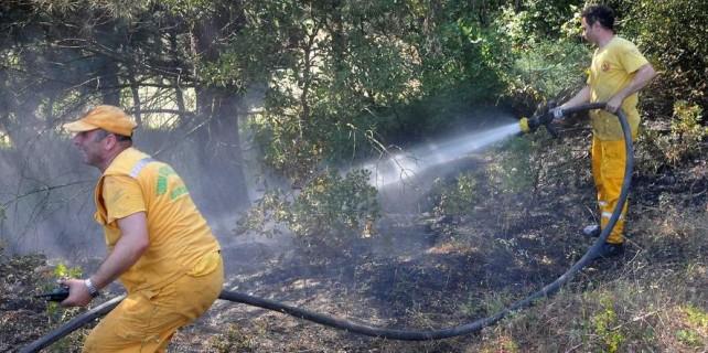 Orman yangını...Bursa ekipleri seferber oldu