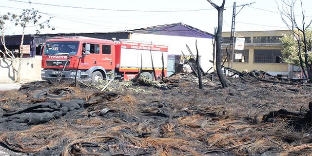 Bursa'daki yangının faturası ağır oldu