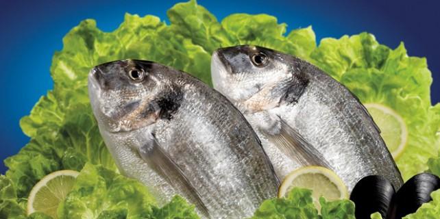 Balık vücut direncini arttırıyor