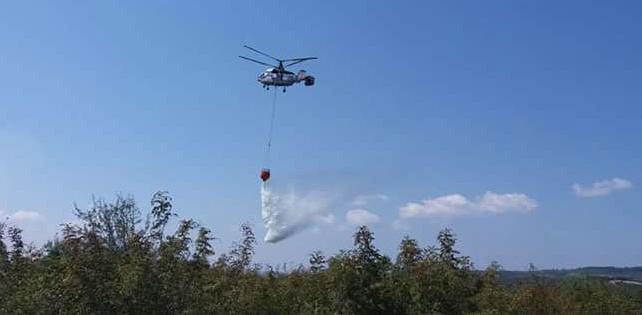 Bursa'da orman yangını korkuttu!