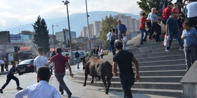 Kent Meydanı İspanyol arenasına döndü