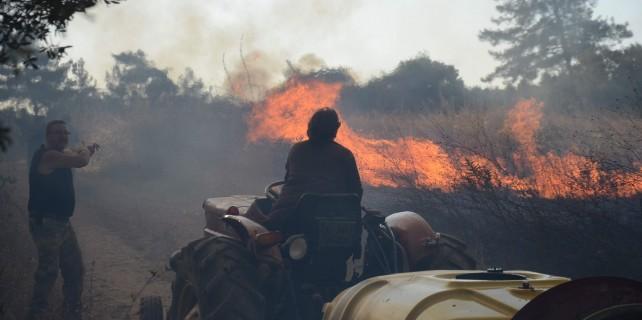 Bursa'da orman yangınında sabotaj şüphesi