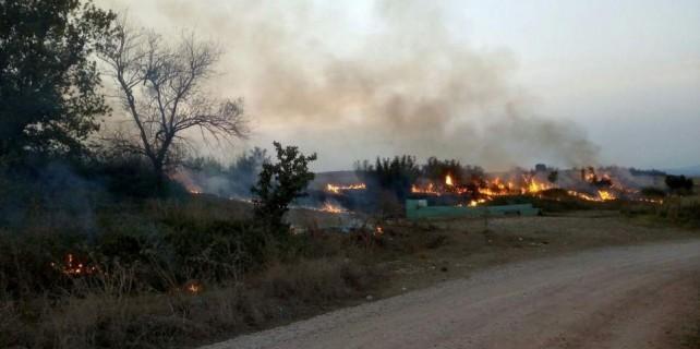 Bursa'da bir orman yangını daha...