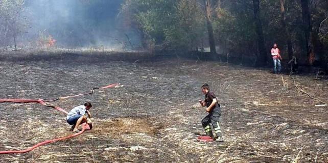 Çakmakla oyun ormanı yakıyordu