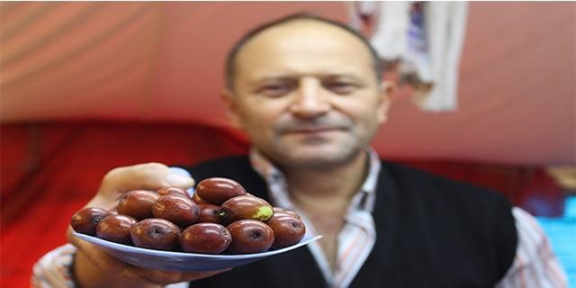 Bursa'da yetişen şifa kaynağı tezgahlarda yerini aldı