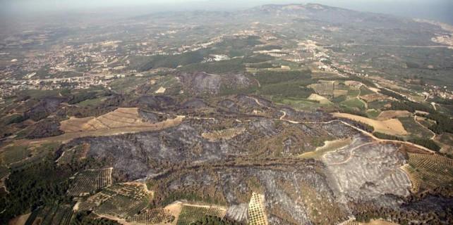 Bursa'nın en değerli o arazileri için bakandan açıklama...