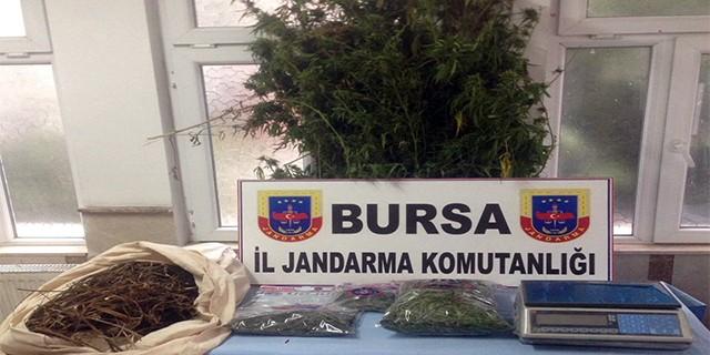 Bursa'da Jandarma ekipleri göz açtırmıyor