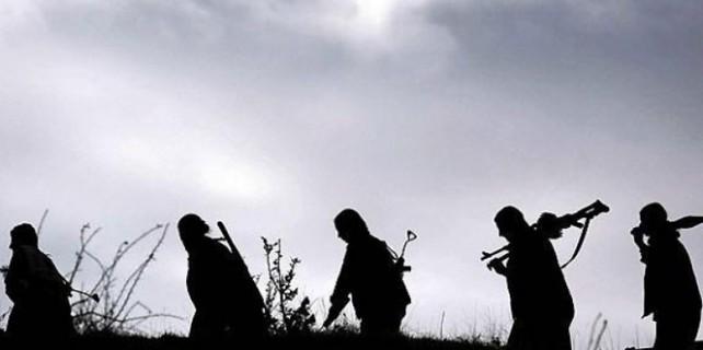 TSK: 66 terörist öldürüldü!