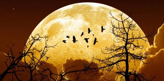 İşte Süper Ay'dan müthiş manzaralar