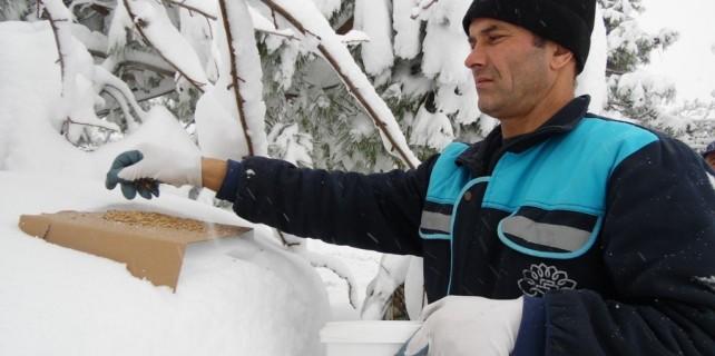 Nilüfer'de karla mücadele her alanda sürüyor