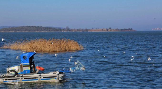 Gölyazı'da büyük temizlik