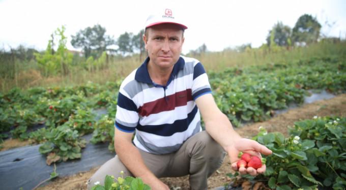 Bursa'nın sertifikalı çiftçileri