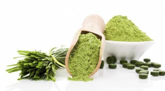 Vitamin ve protein deposu su yosunları