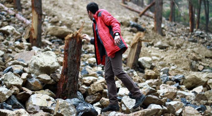 Bursa'da orman katili firmanın cezası belli oldu