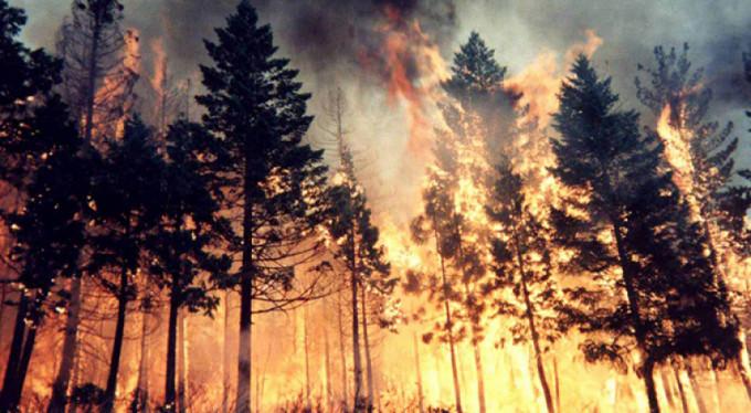 Yaz bitti, orman yangıları bitmedi! 1 ayda onlarca...